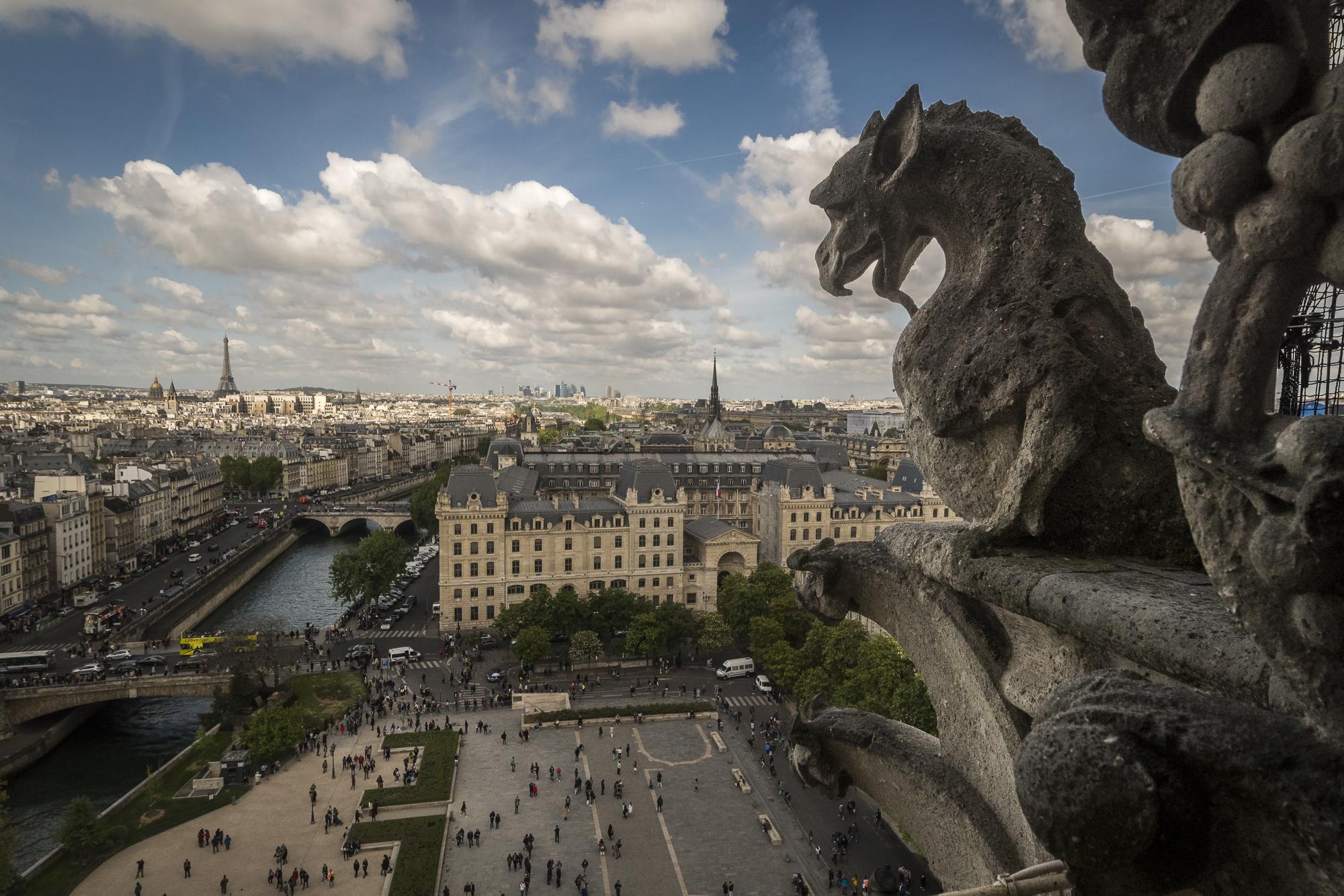 Notre Dame  PHOTOGRAPHY: ALEXANDER J.E. BRADLEY • NIKON D500 • AF-S NIKKOR 14-24MM Ƒ/2.8G ED @ 14MM • Ƒ/8 • 1/8000 • ISO 400