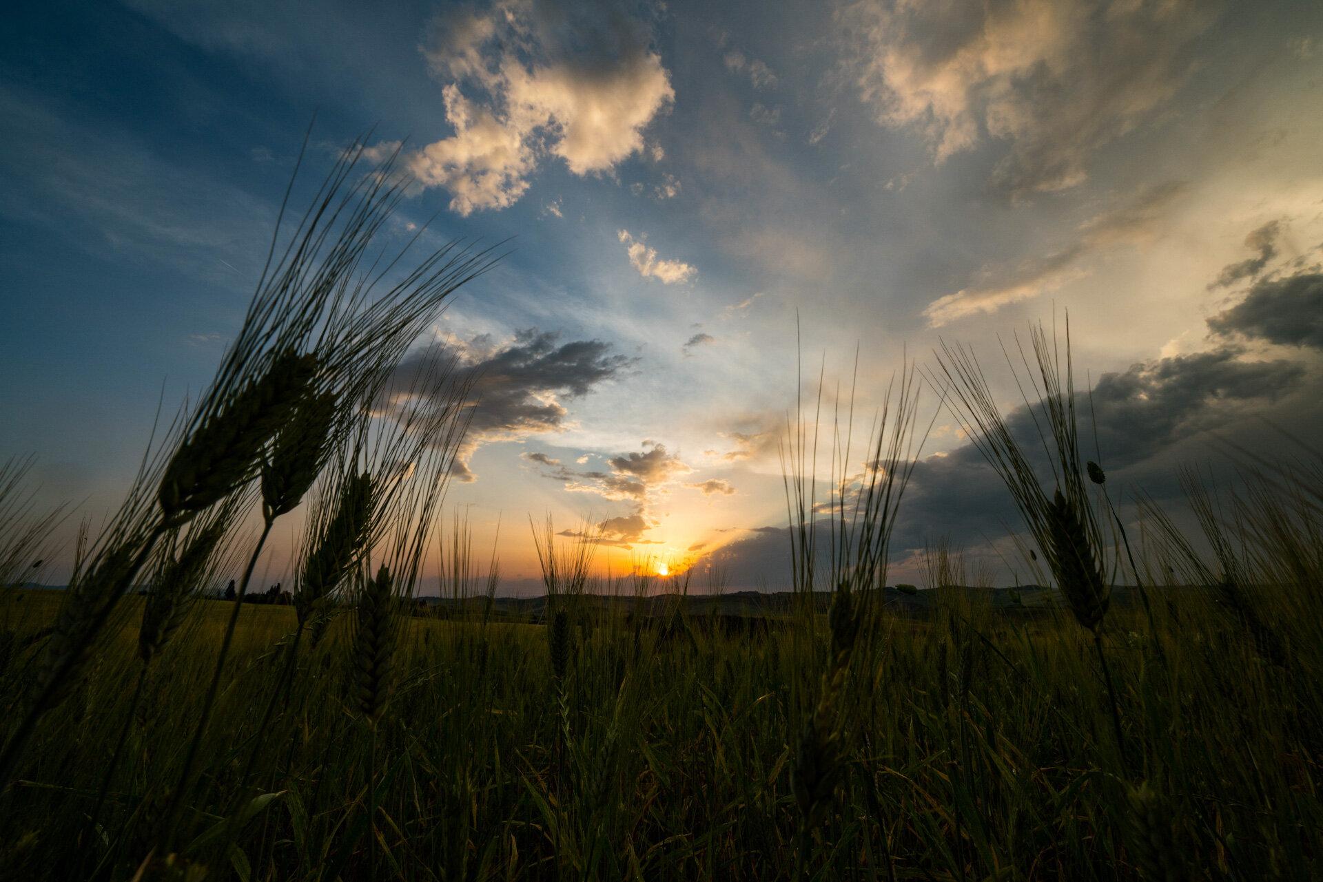 Sunset in Val d'Orcia  PHOTOGRAPHY: MIRKO FIN • Sony Alpha 7R MkIII • SONY FE 12-24MM Ƒ/4 G @ 12MM • Ƒ/13 • 1/125 sec • ISO 200
