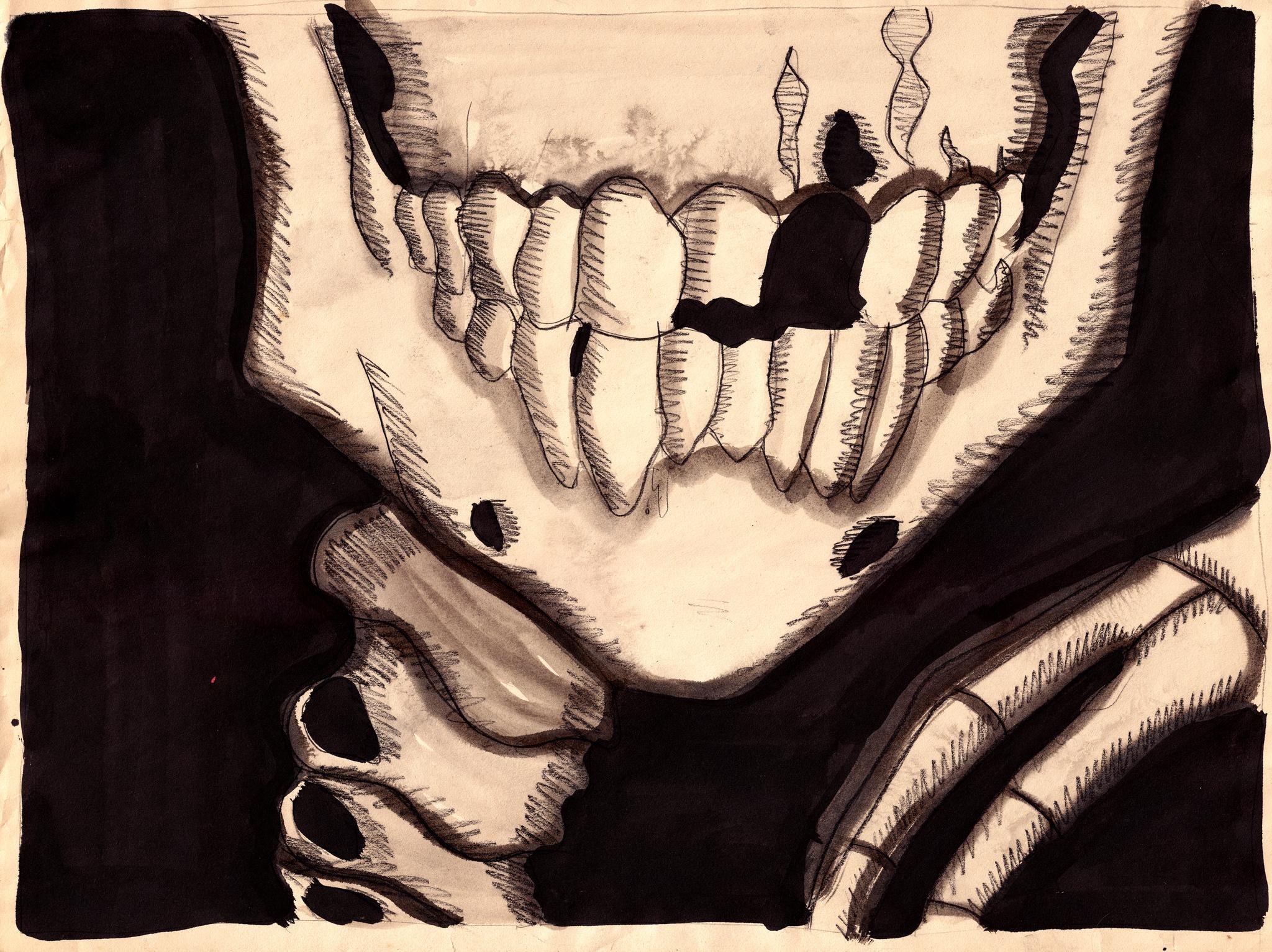 Bones 2