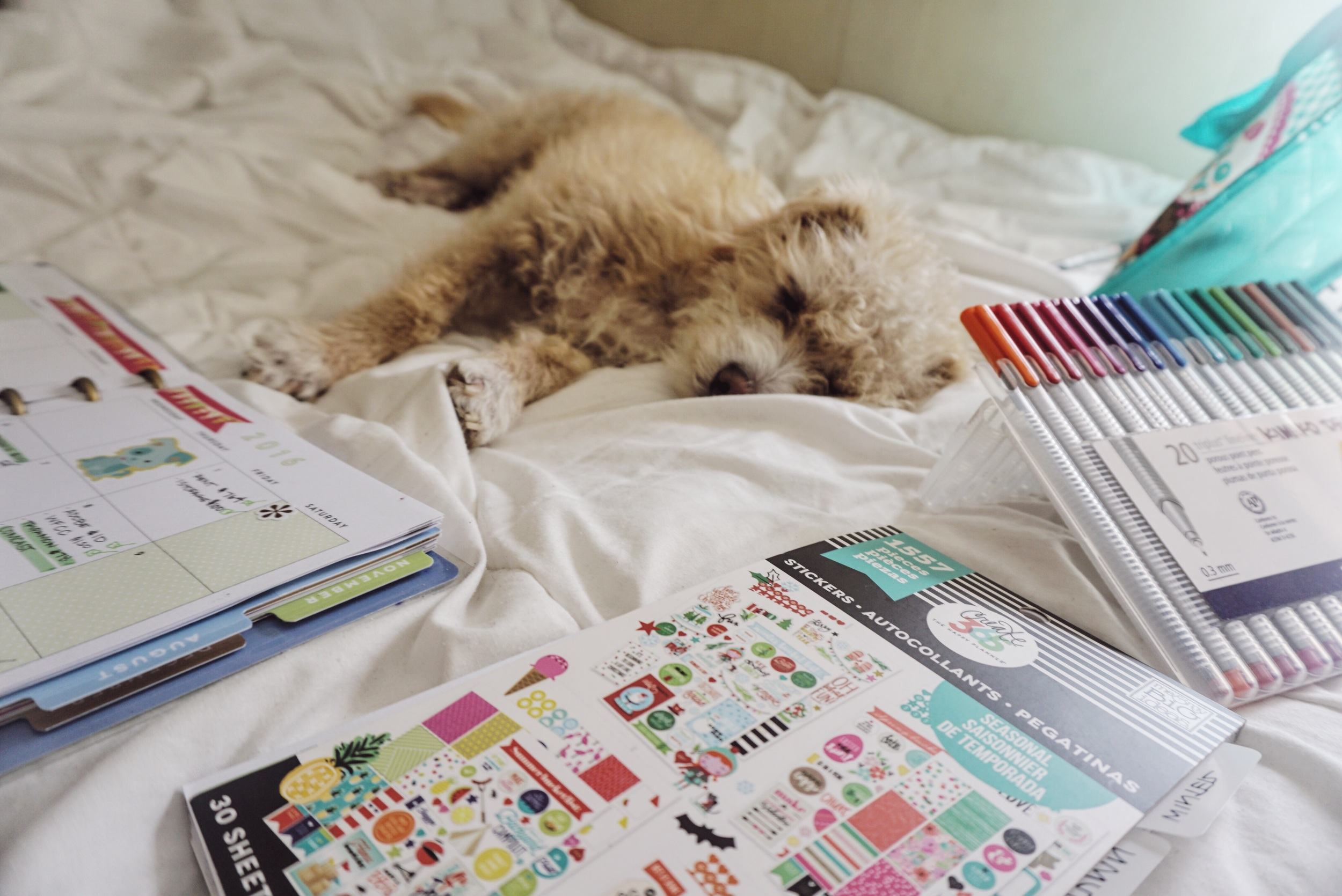 My planner decorating partner, Socks! Next to my 1557 seasonal sticker book (MAMBI), my Happy Planner and my 20 pack of Staedler pens.