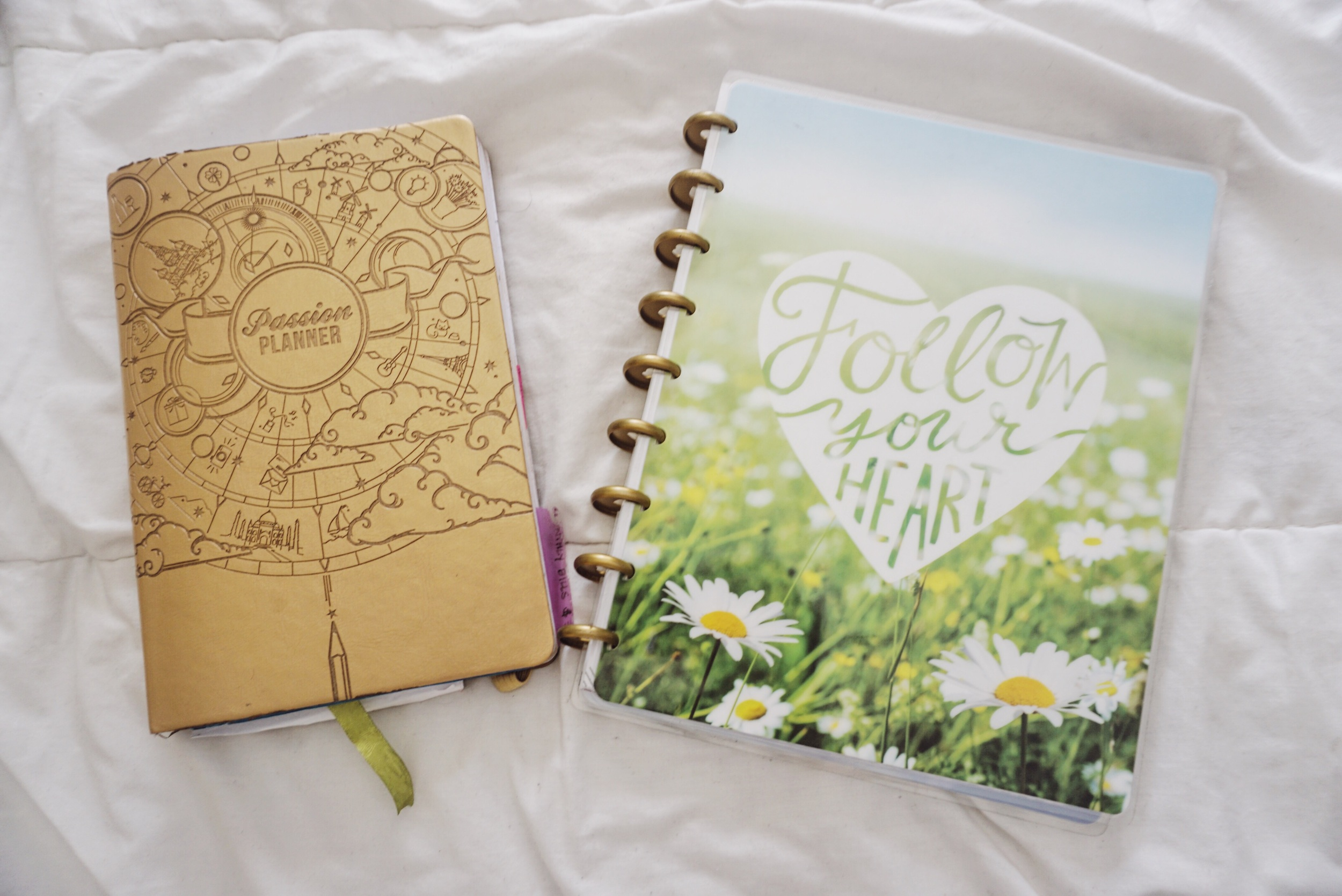 Passion Planner and The Happy Planner. (The Happy Planner is the Picture Quote style, and shown with mini disks)