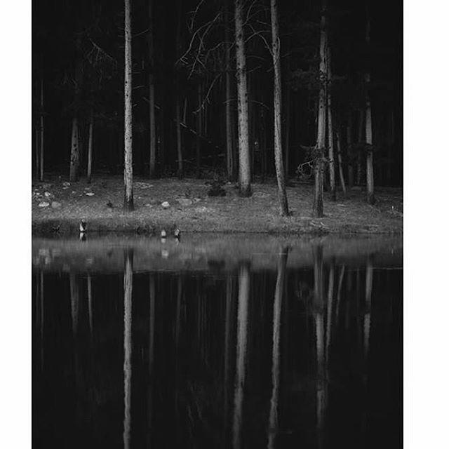 Photo from Volume 2 : Stories Untold. •••• 📷: @jordan_is •••• #utahphotographer #slcphotographer #trees #blackandwhite #reflection #mirror #uintas #darkness