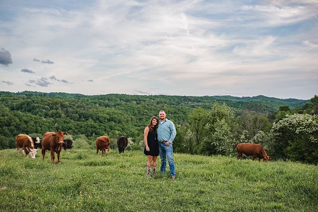Wedding season is officially here! 💕  I had an incredible time shooting Micah and Lance's engagement session.  Even had a few visitors join in. 🐮