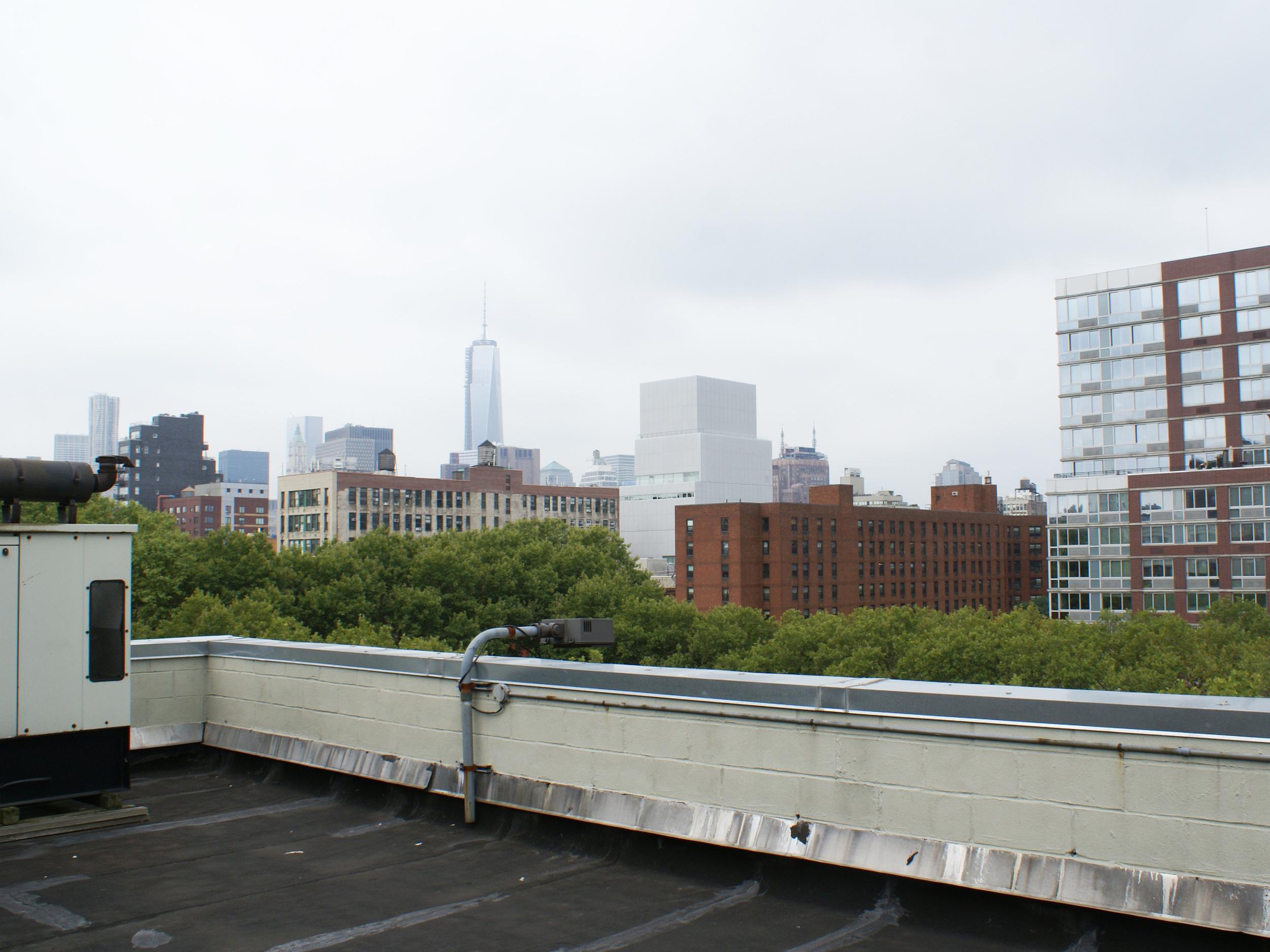 11 Roof 1.jpg