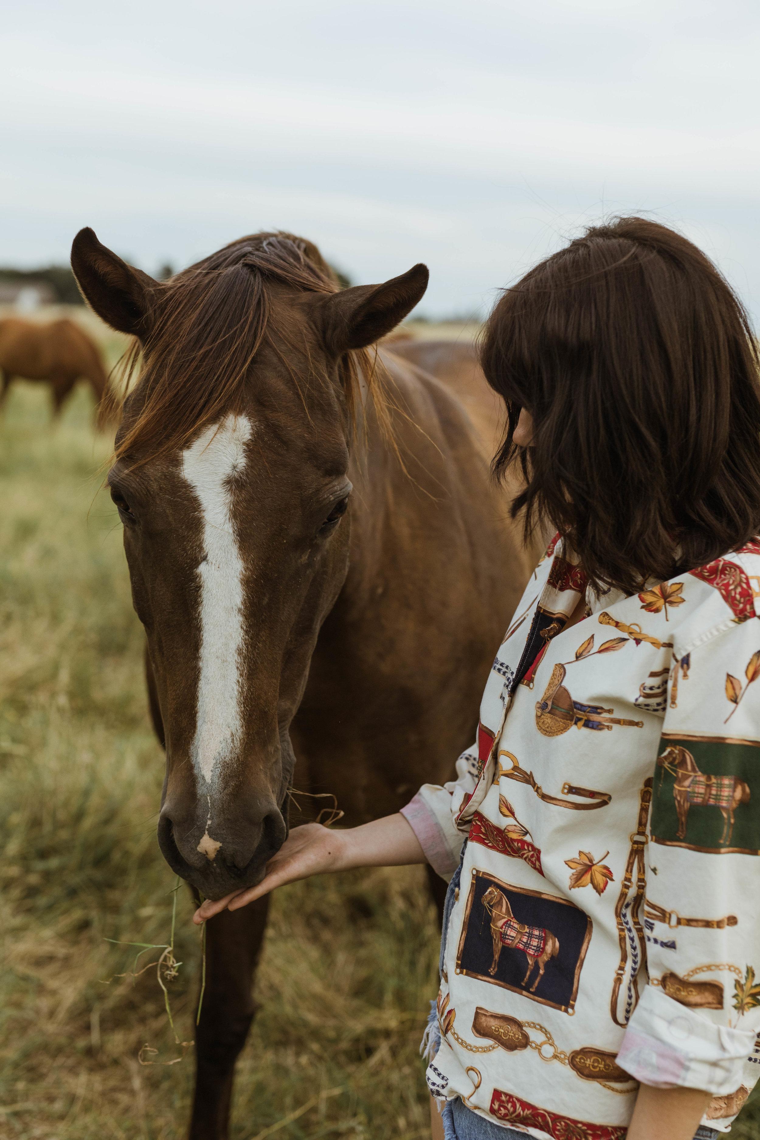 racheal-horses-13.jpg