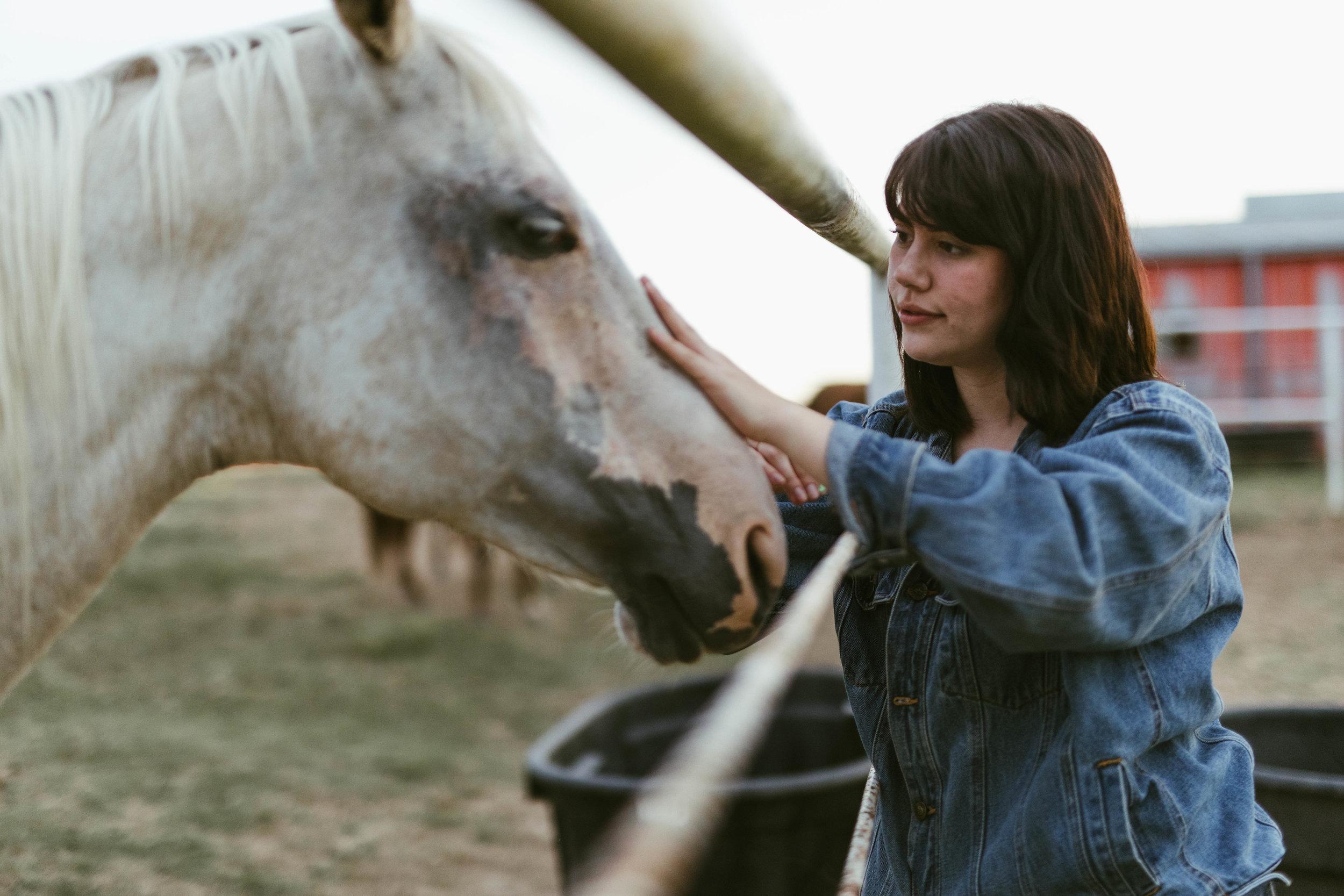 racheal-horses-34.jpg