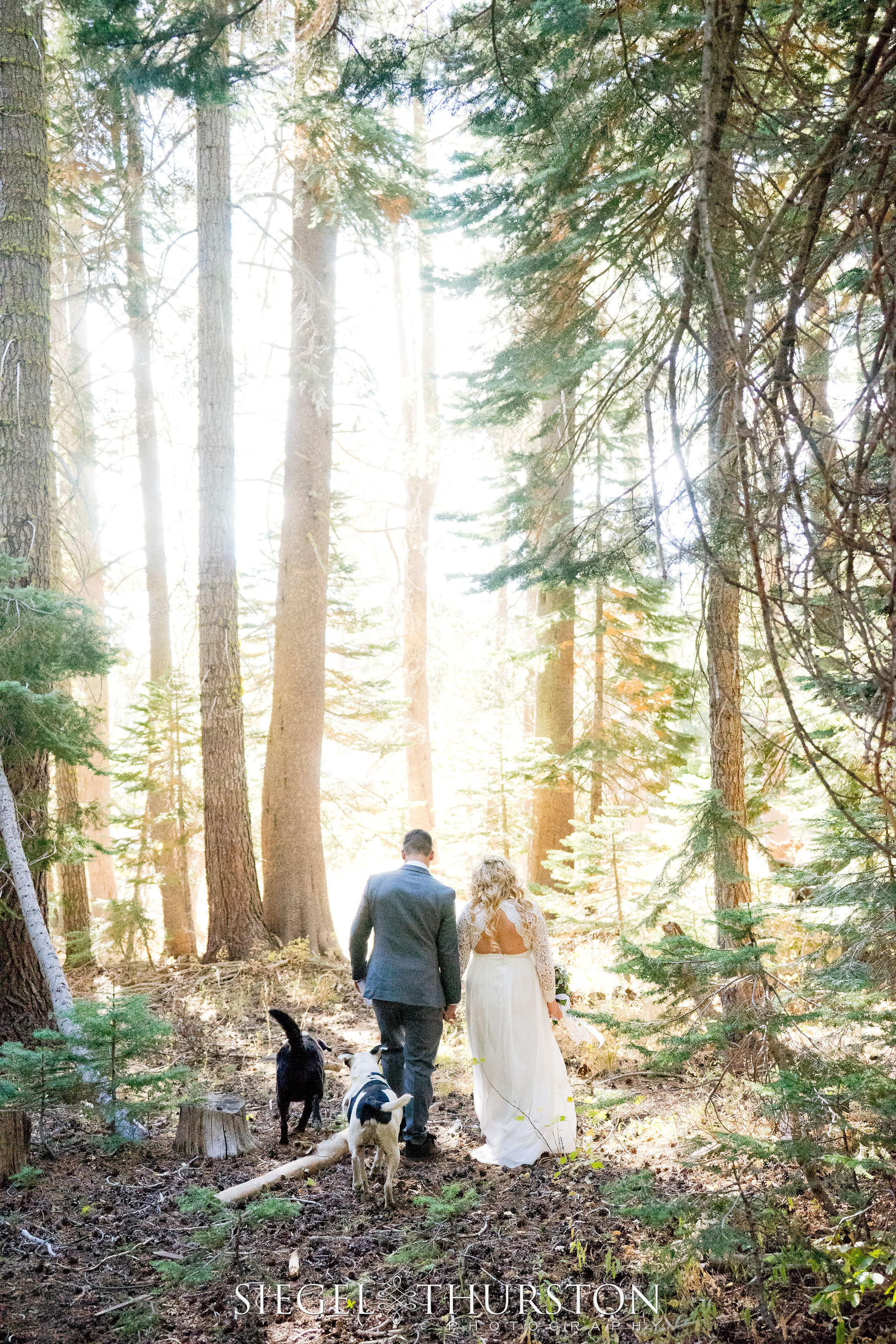 Kristen+Zach_wedding_©siegelthurstonphotography-421.jpg