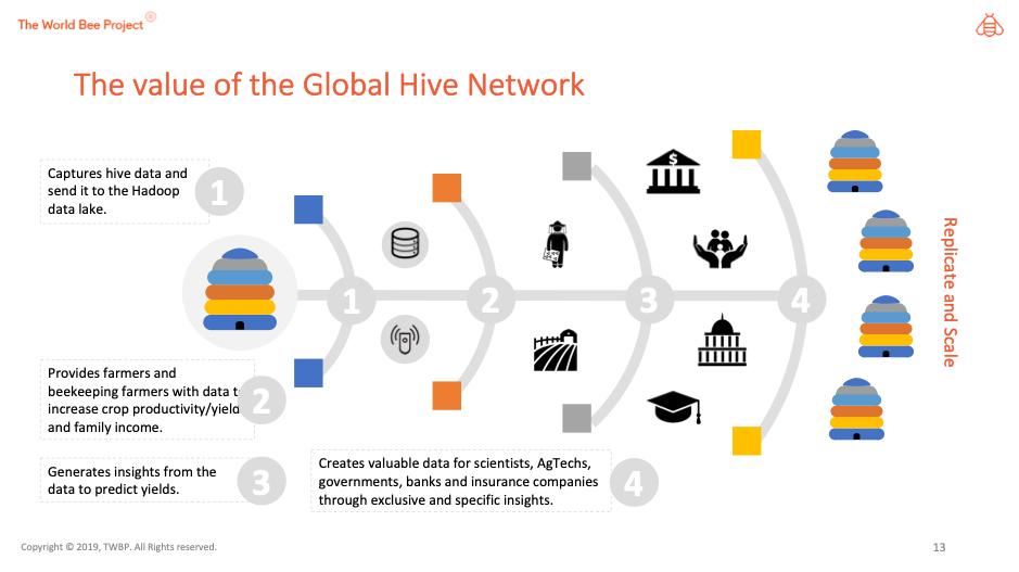 Jak pszczoły będą chronione przez Sztuczną Inteligencję i Internet Rzeczy