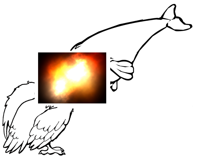 vulturemeetswhale2.png