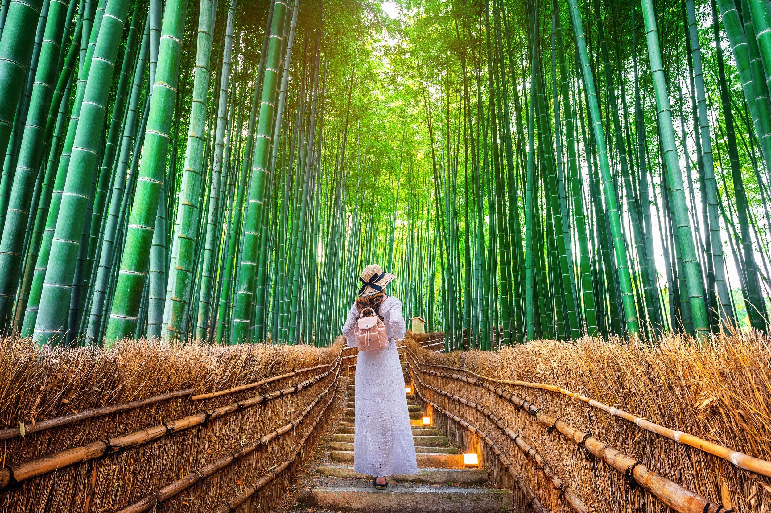 3 - Japan, Kyoto, Arashiyama, Bambo Forest (2).jpg