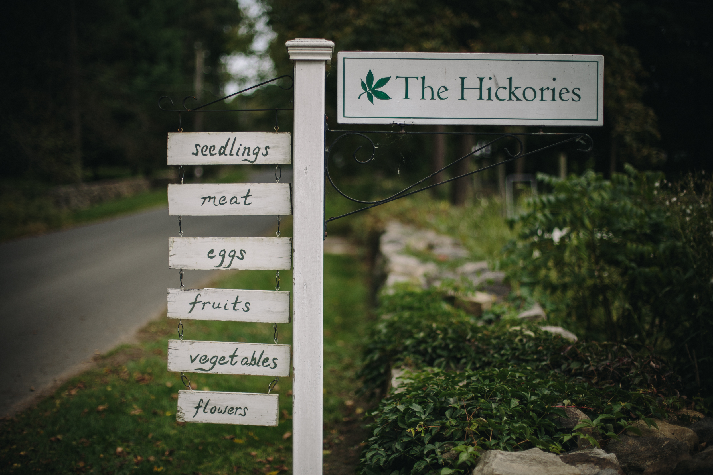 thehickories-5.jpg