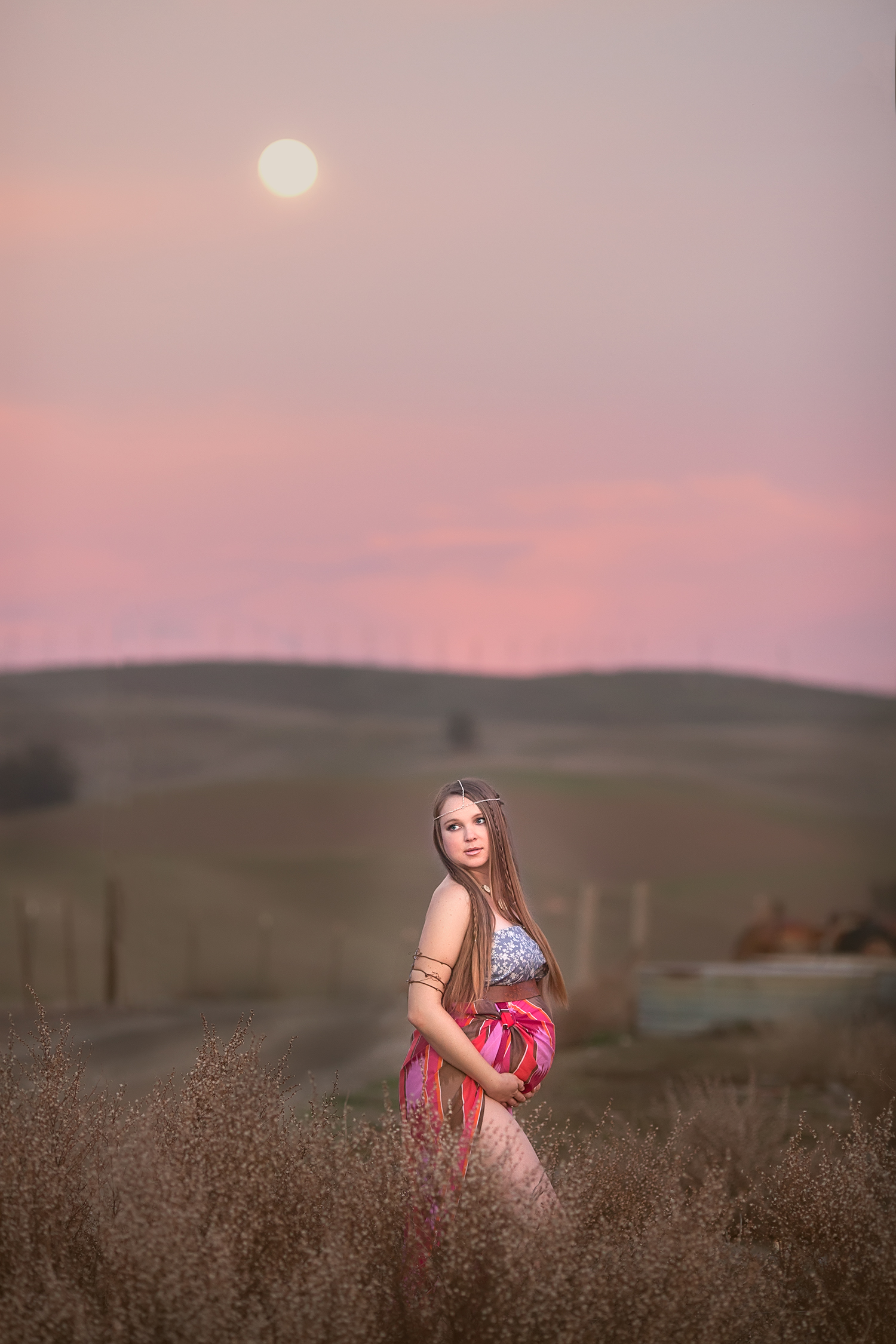 Dena_Rooney_Maternity_Portraits_028.jpg