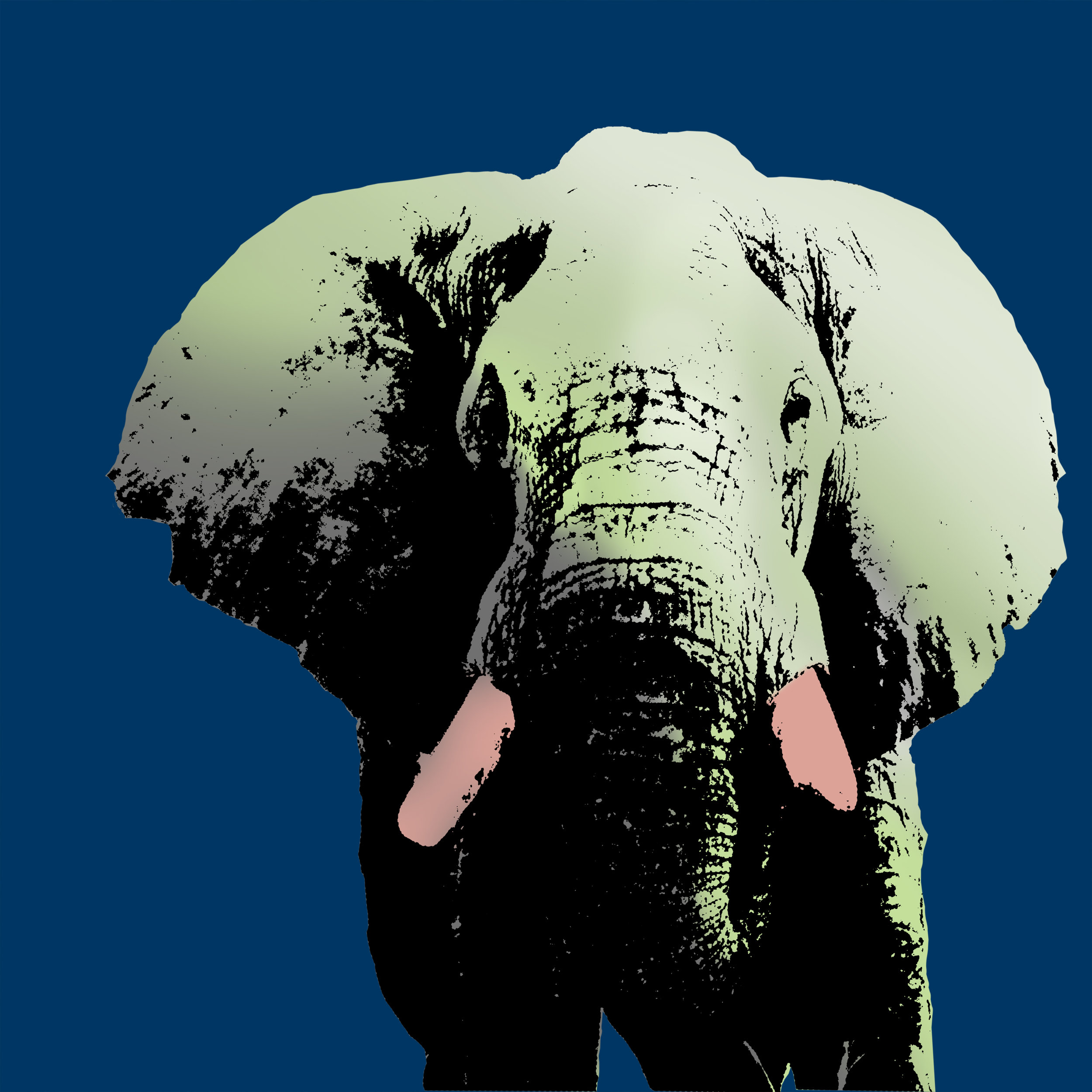 ElephantPopArt.jpg