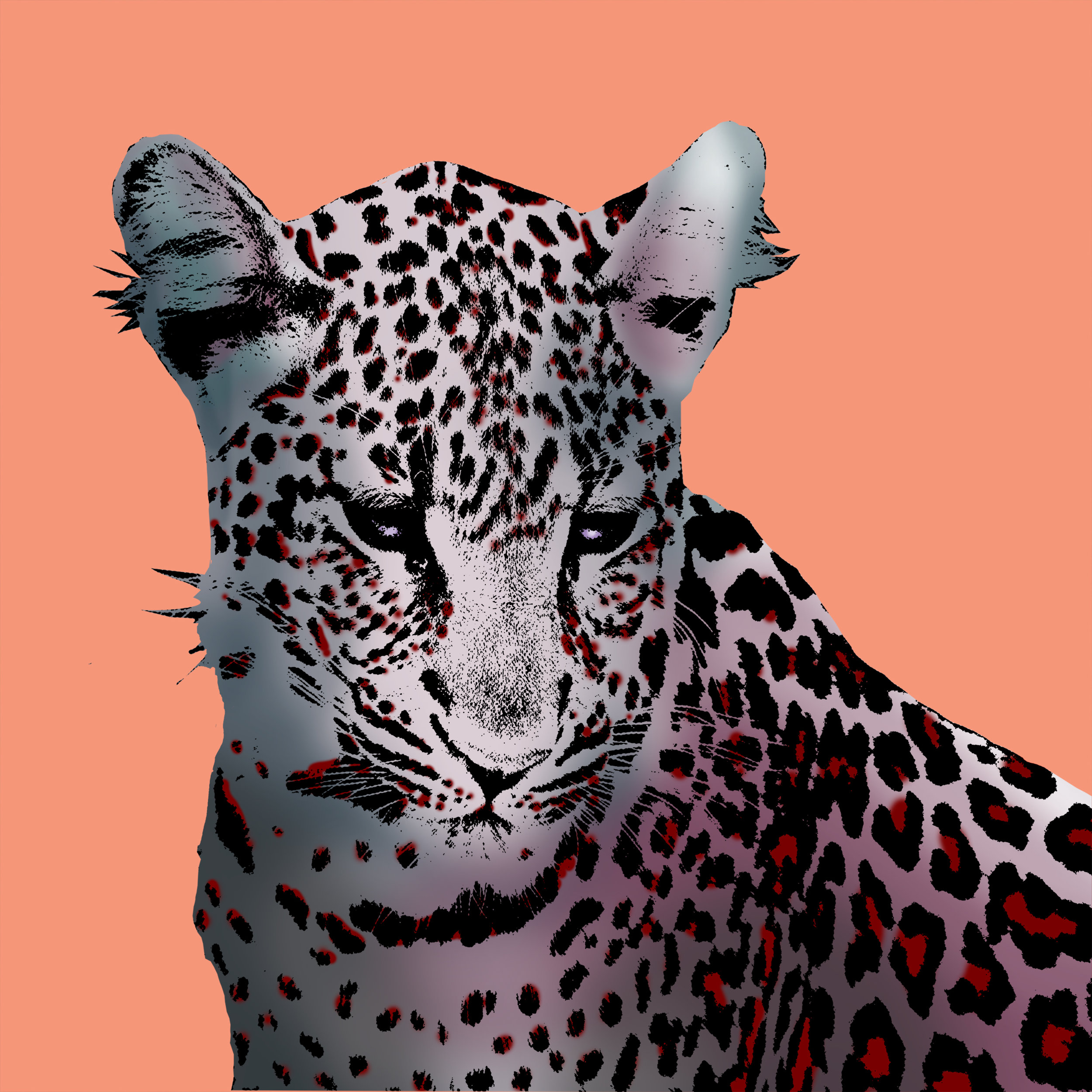 LeopardPopArt.jpg