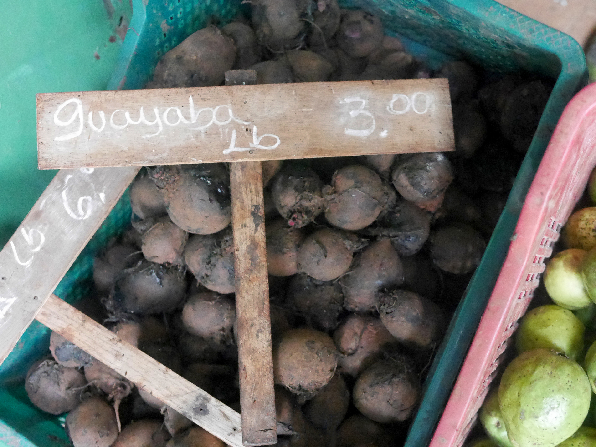 Guayaba... which I think is Taro root in english.