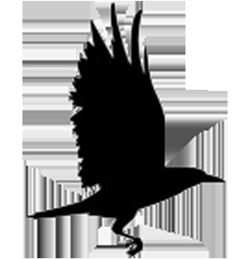 Raven Logo.jpg