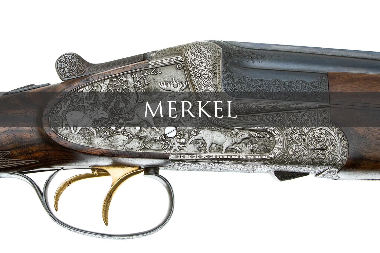 Merkel2Banner.jpg