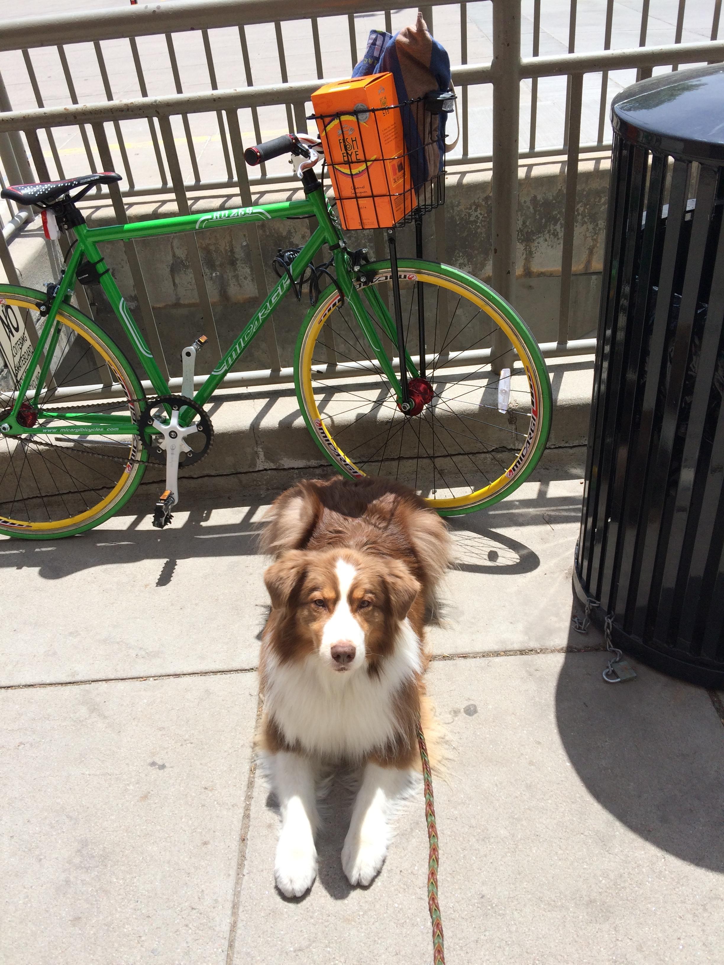 Roo loves biking adventures!