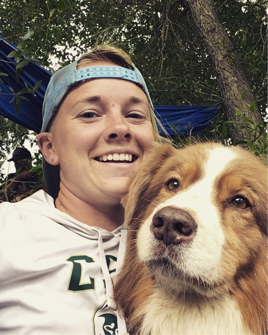 dog-training-fort-collins-australian-shepherd