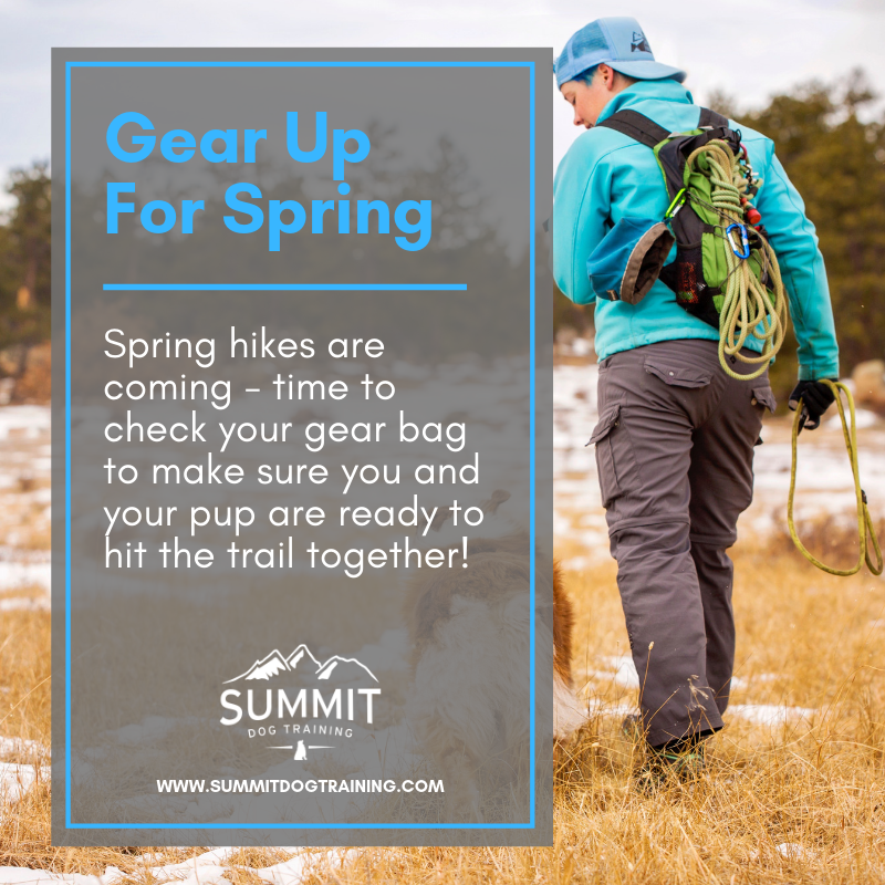 a5f4e389584 Gear Up for Spring Hikes! - Essential Supplies for Hiking with Your ...