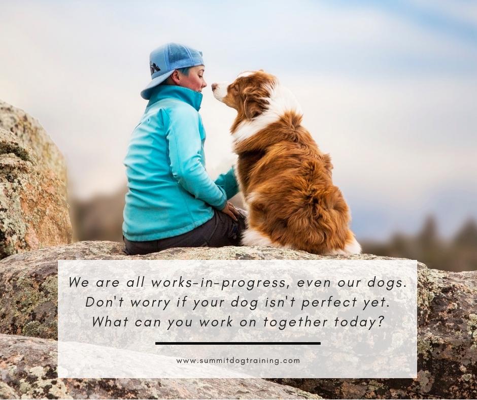my-dog-isn't-perfect-graphic-dog-training-online