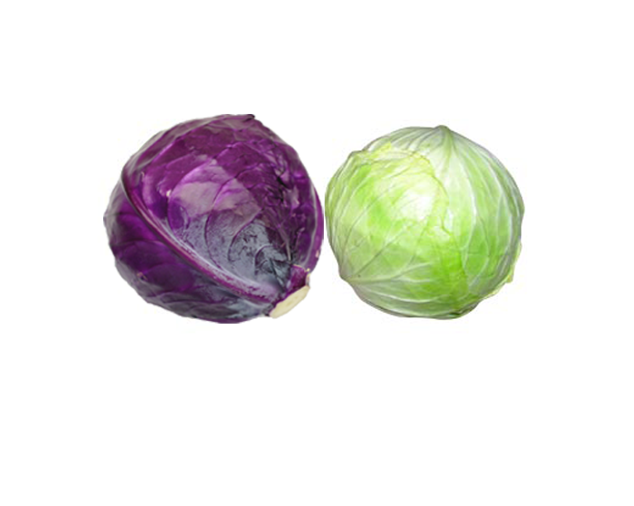 <STRONG>CABBAGE</STRONG>