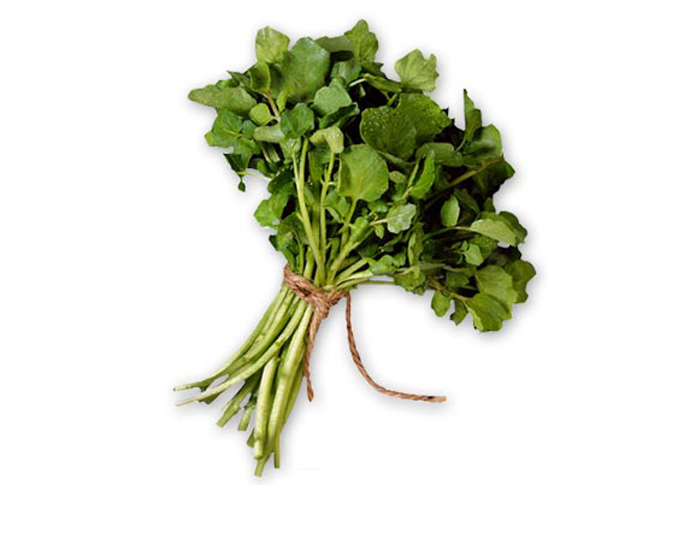 <STRONG>WATERCRESS</STRONG>