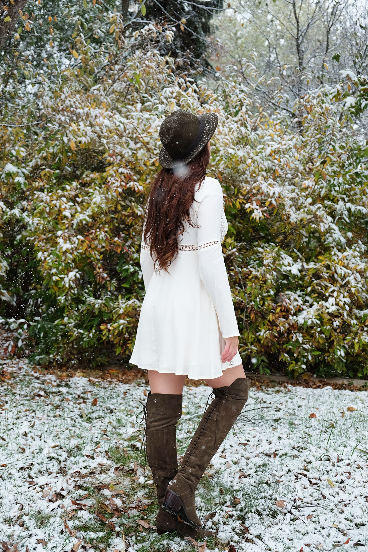 snow_6_sml.jpg