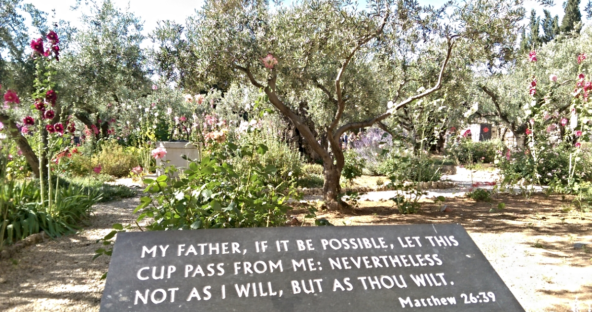 Verse from the Book of Matthew posted at the Garden of Gethsemane.