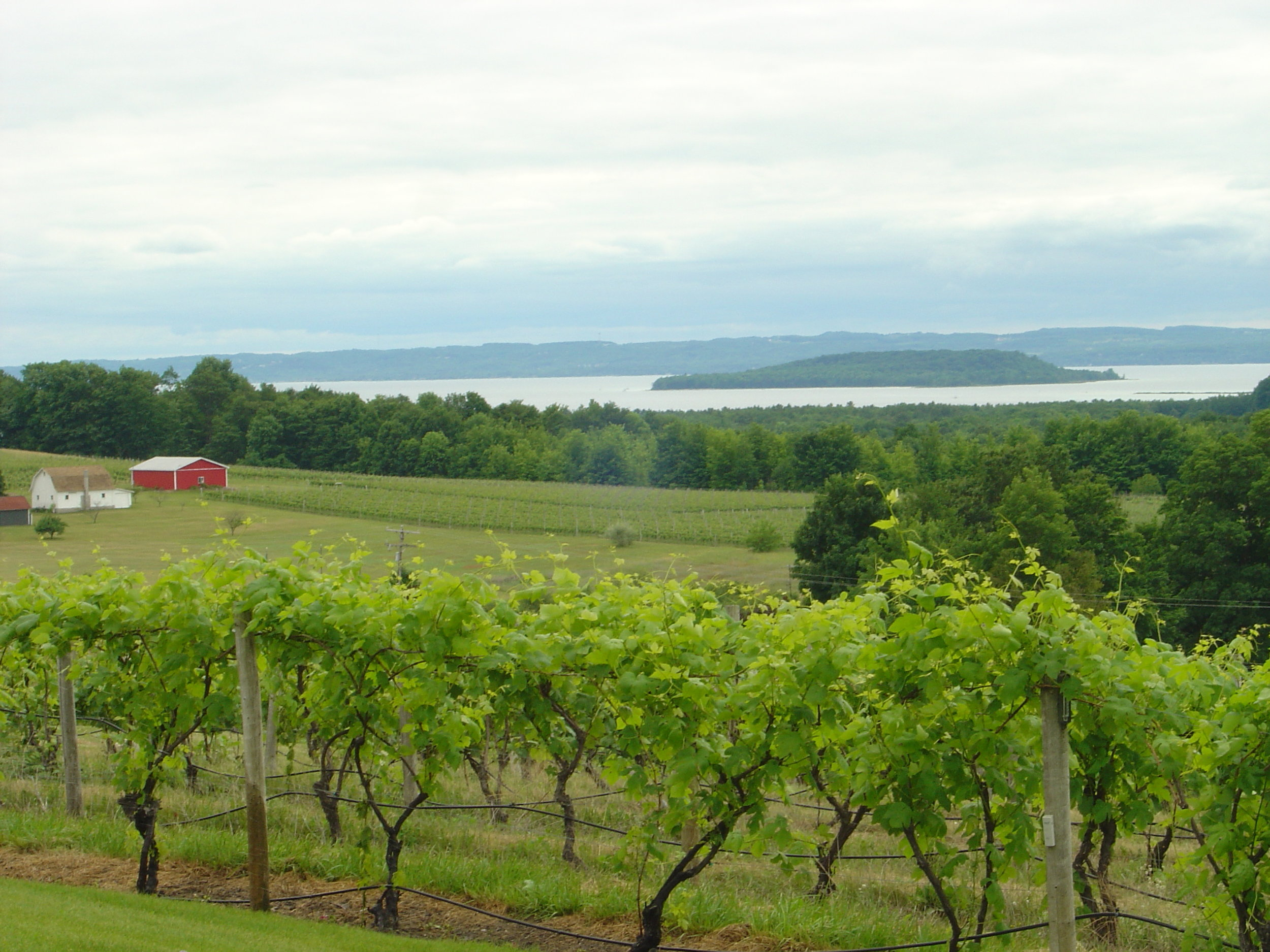 View of Grand Traverse Bay from Old Mission Peninsula (Image:  Wikimedia Commons )