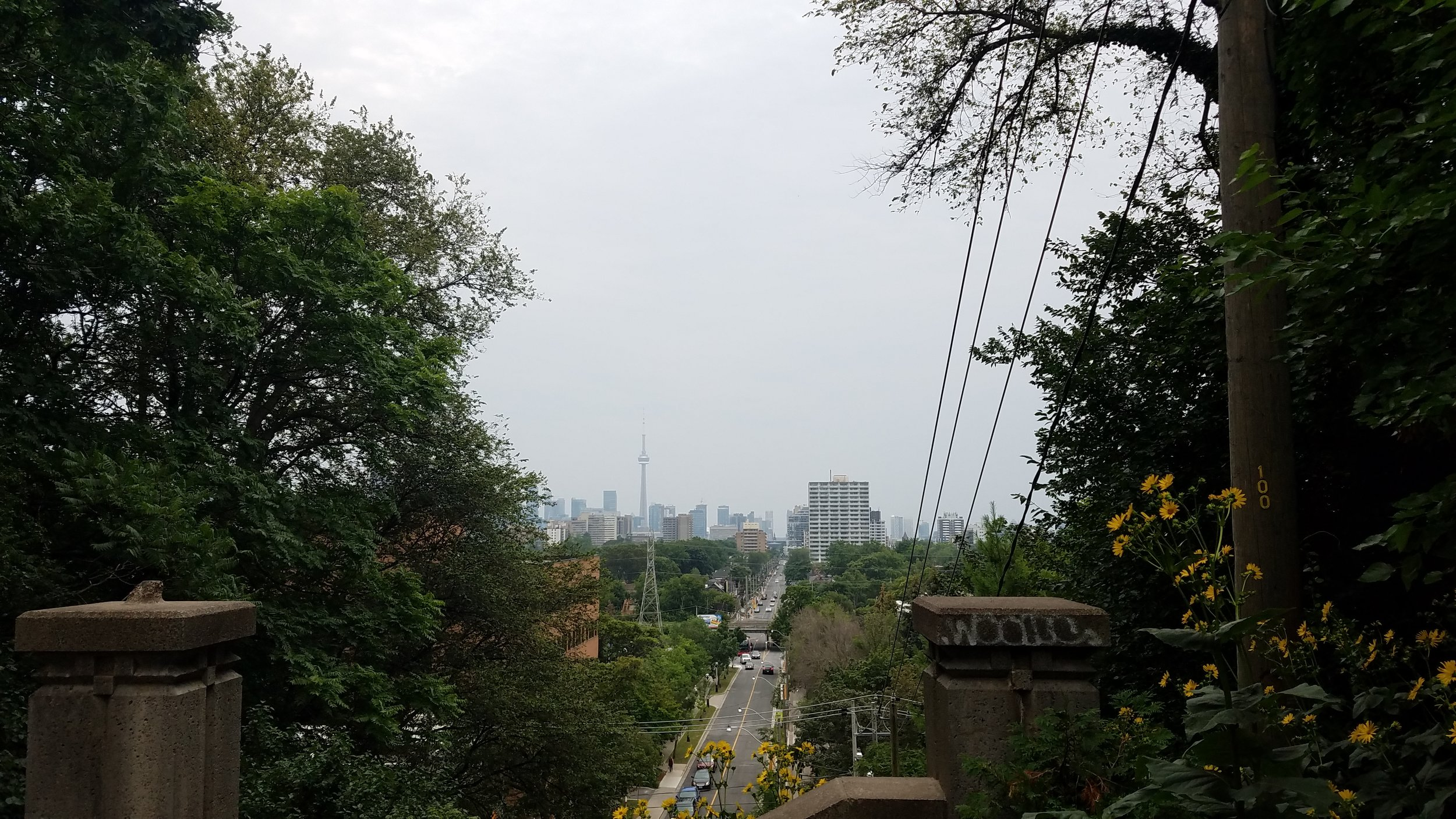 Looking downtown from Spadina Park