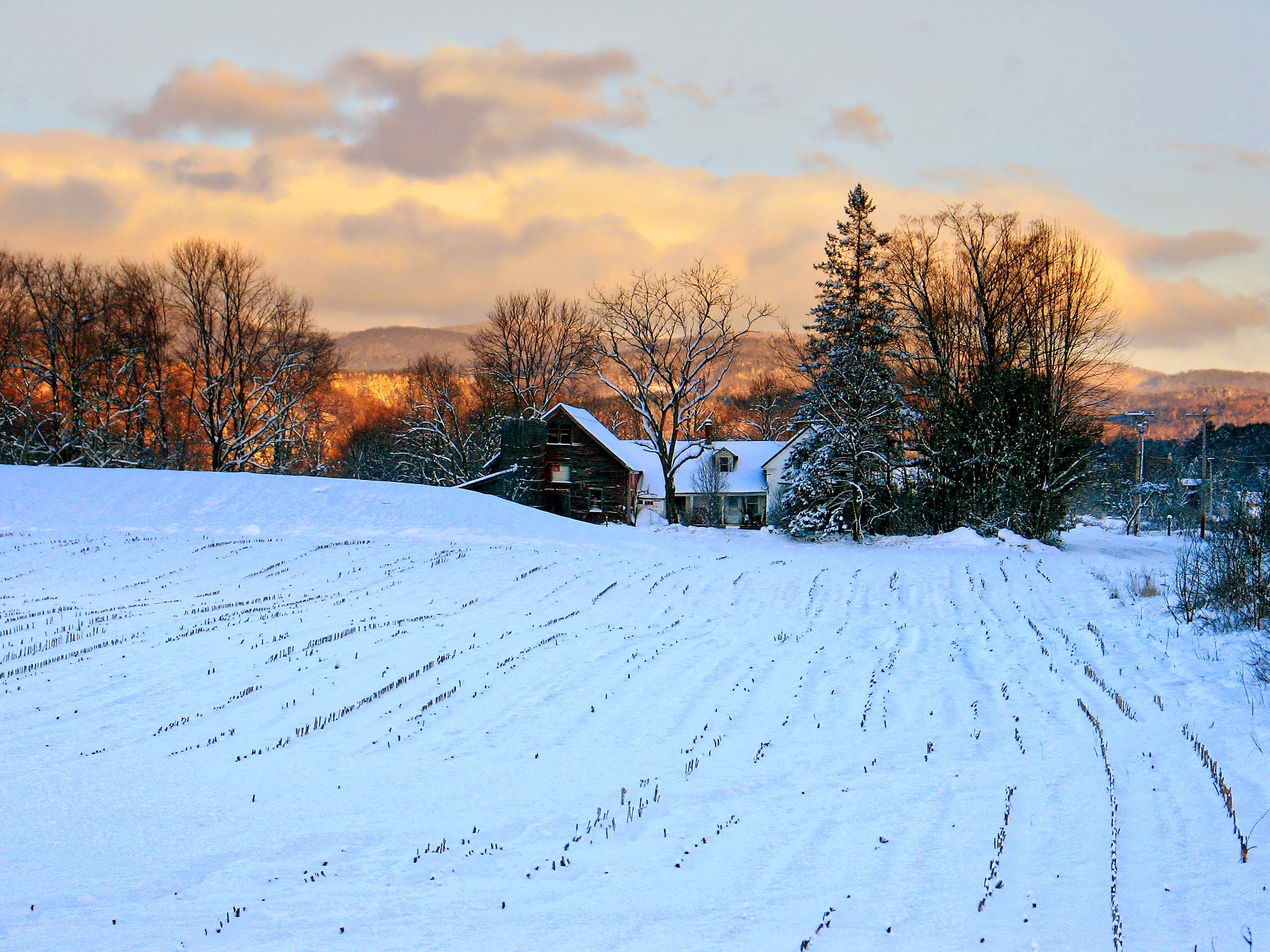 "A farm in Vermont perhaps befitting of Dick Allen's ""If You Get There Before I Do"". (Image:  Pixabay )"