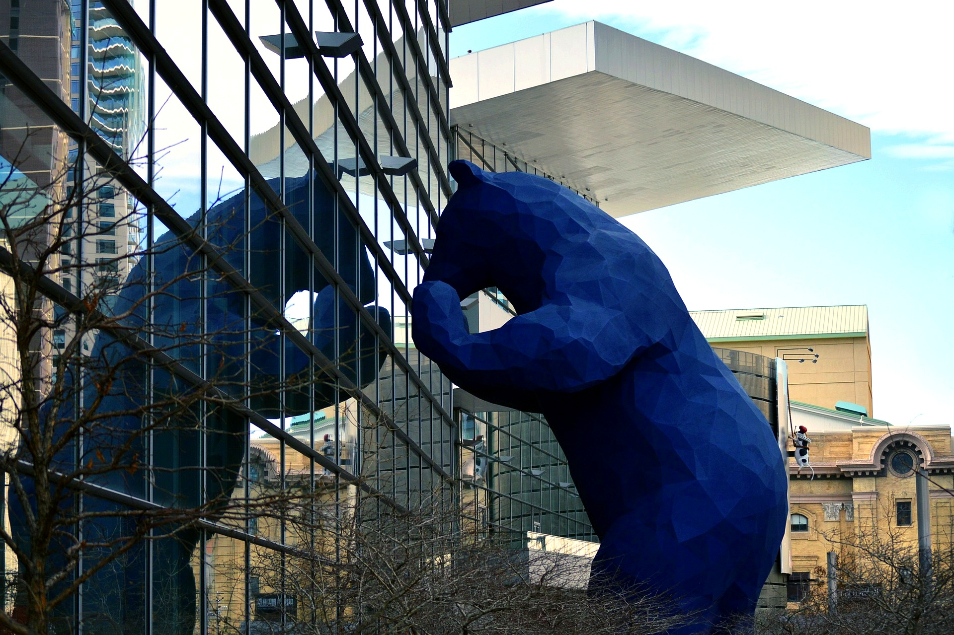 This big blue bear can be found peeking inside The Colorado Convention Center on 14th Street (Image:  Pixabay )