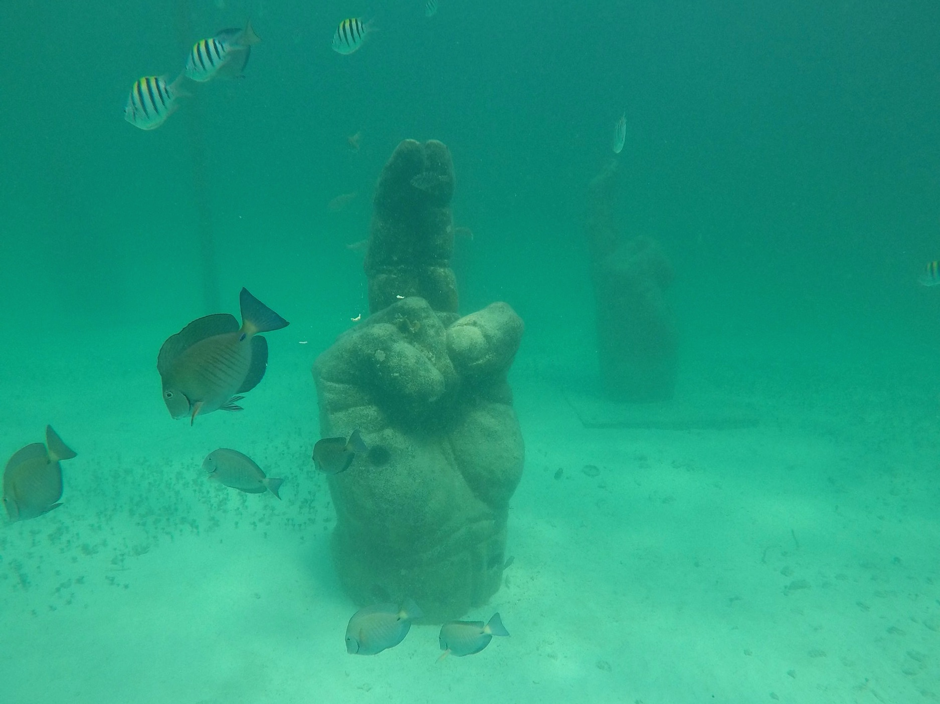 In addition to the tour available through Total Snorkel, there are several other ways to view the underwater museum. The  museum's website  lists eight, in fact, including a handful of scuba diving options and a ride in a glass-bottom boat.