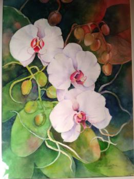 "Orchids 19"" x 13-1/2"""