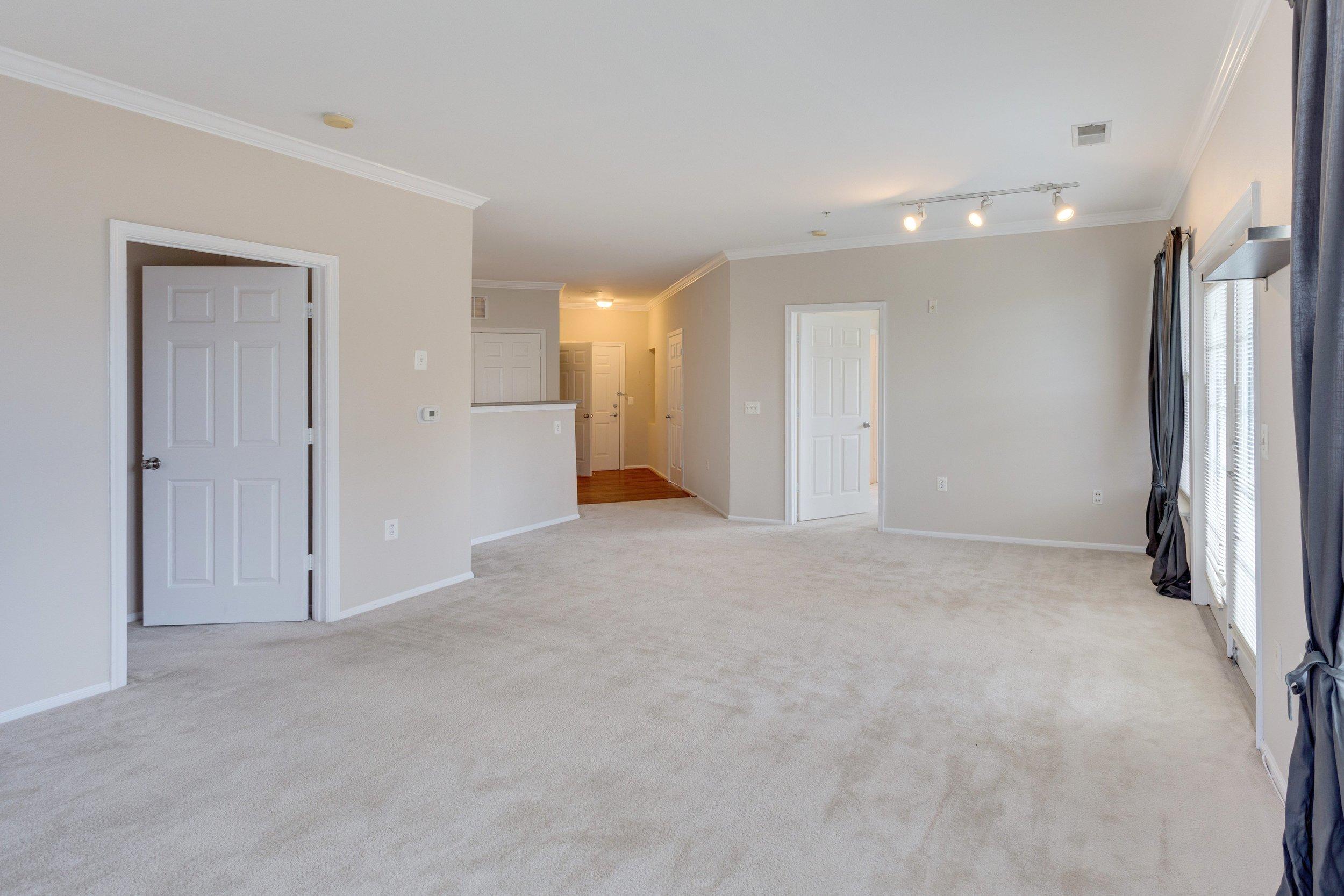 3009 Nicosh Cir Unit 4301-print-011-30-Living Room-4200x2800-300dpi.jpg