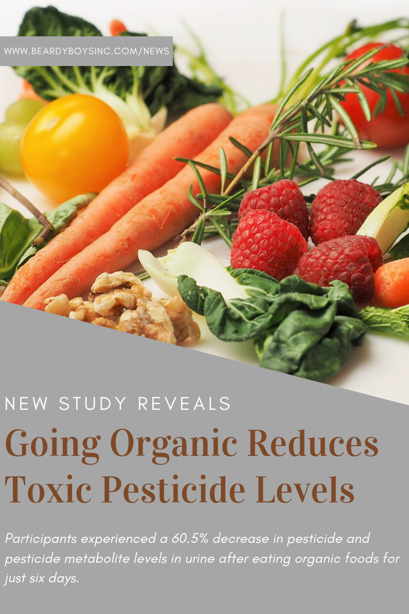 Study Reveals Eating Organic for One Week Reduces Toxic Pesticide Levels Beardy Boys.png