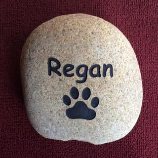 Regan.jpg