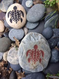 turtletwocolor.jpg