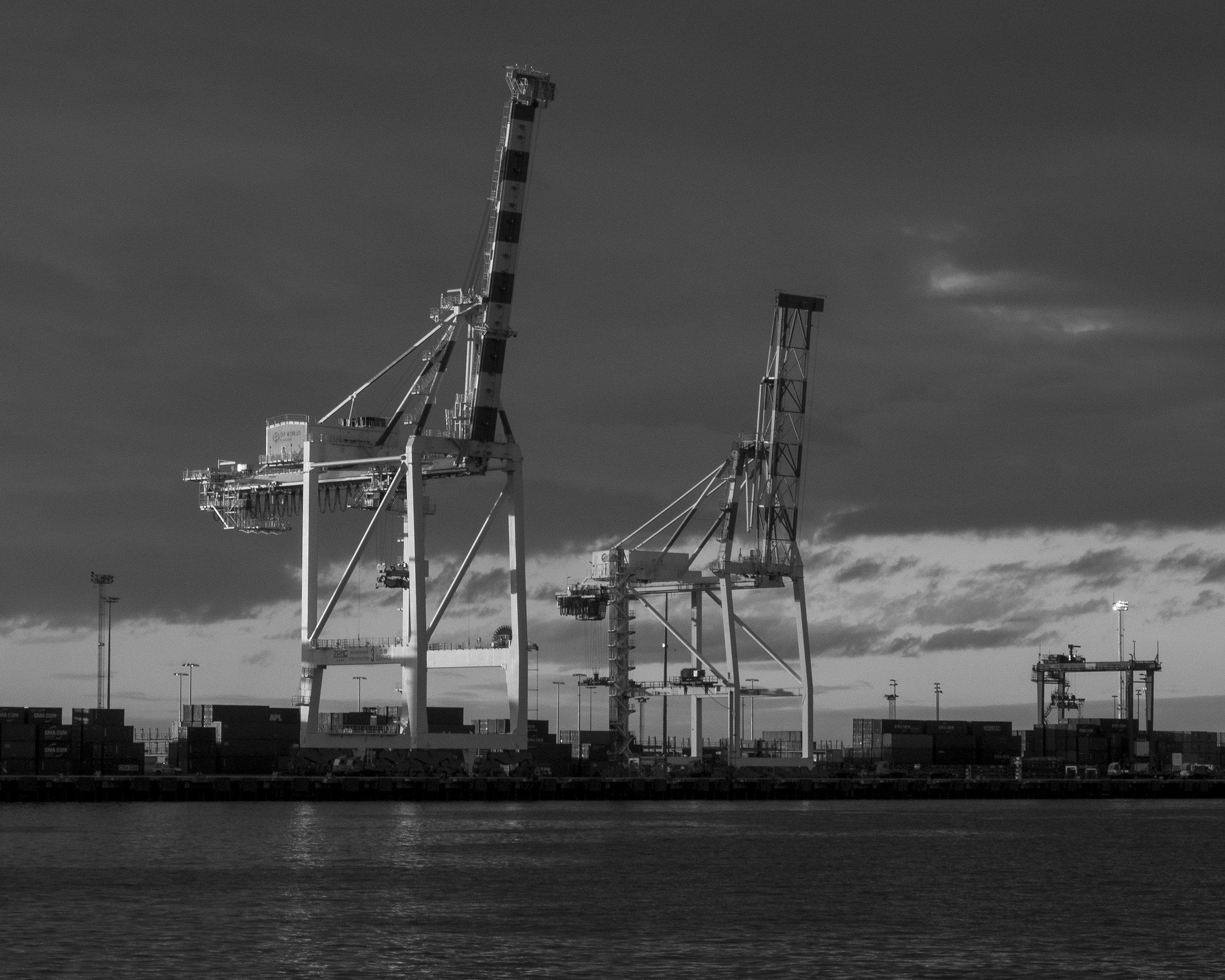 OVERVIEWINSIGHTORCHESTRATE - like giraffes and port logistics