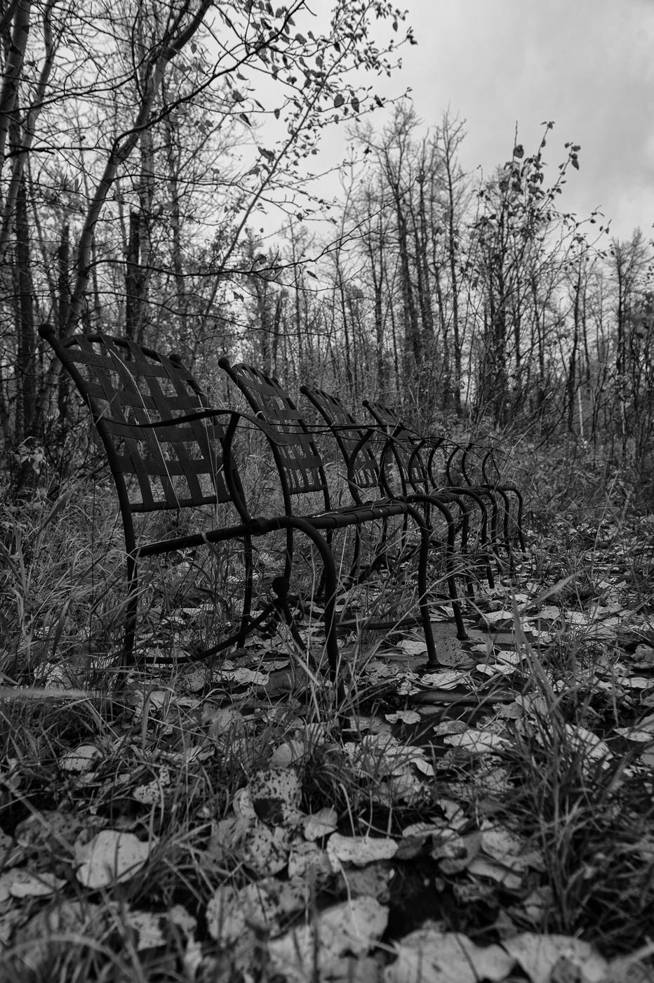 Images Alberta Field Trips-176-Edit.jpg