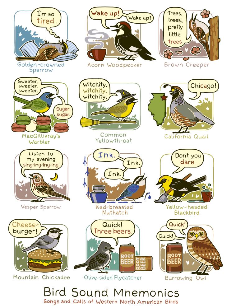 birdsoundswest.jpg