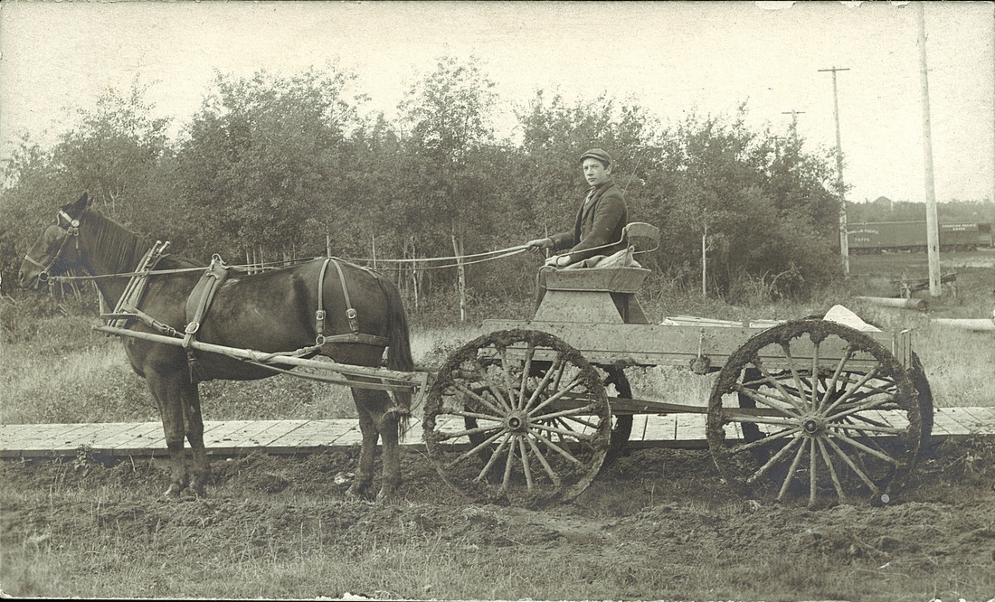 Horse cart on dirt road