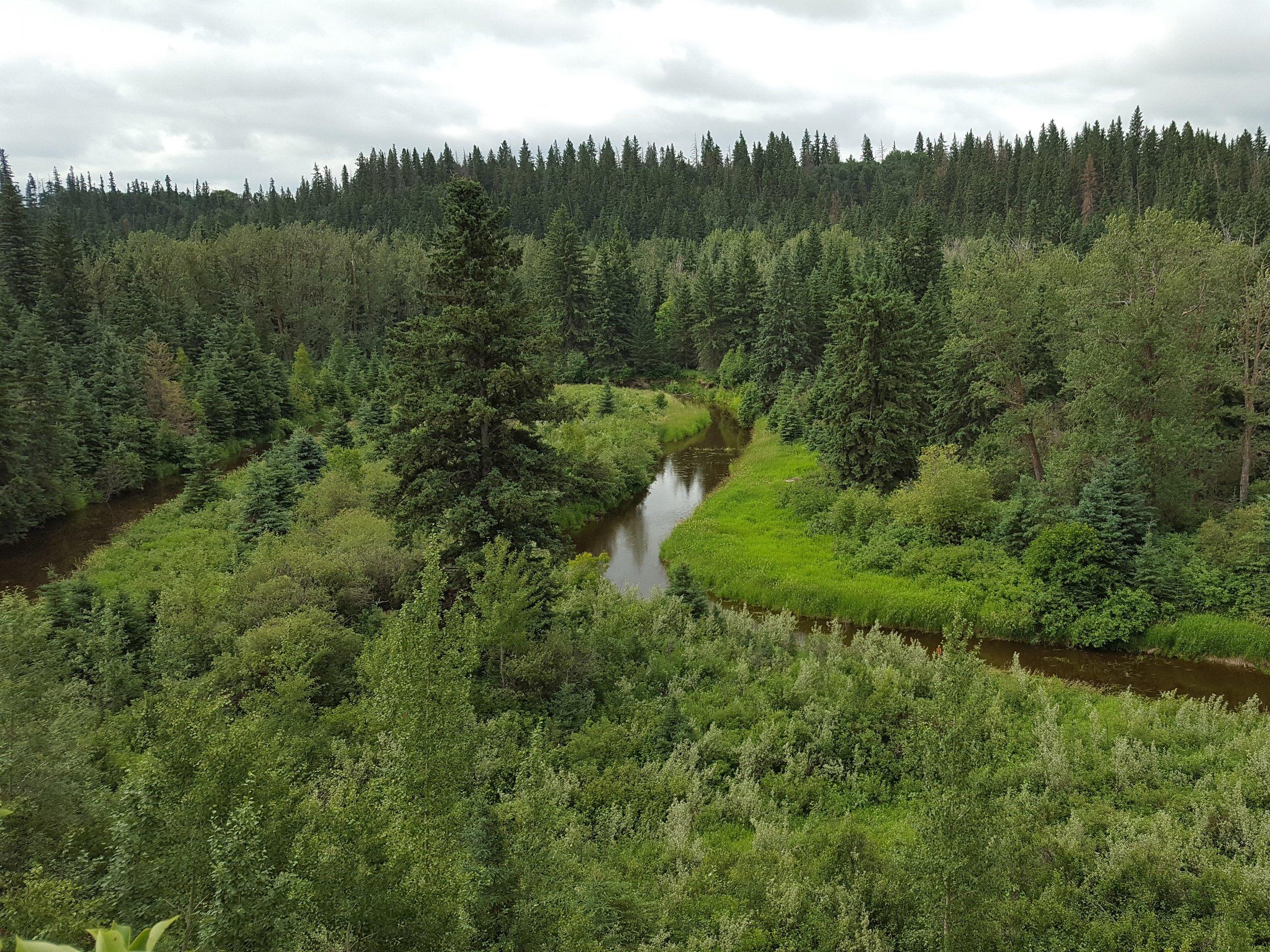 Pipestone Creek Conservation Lands
