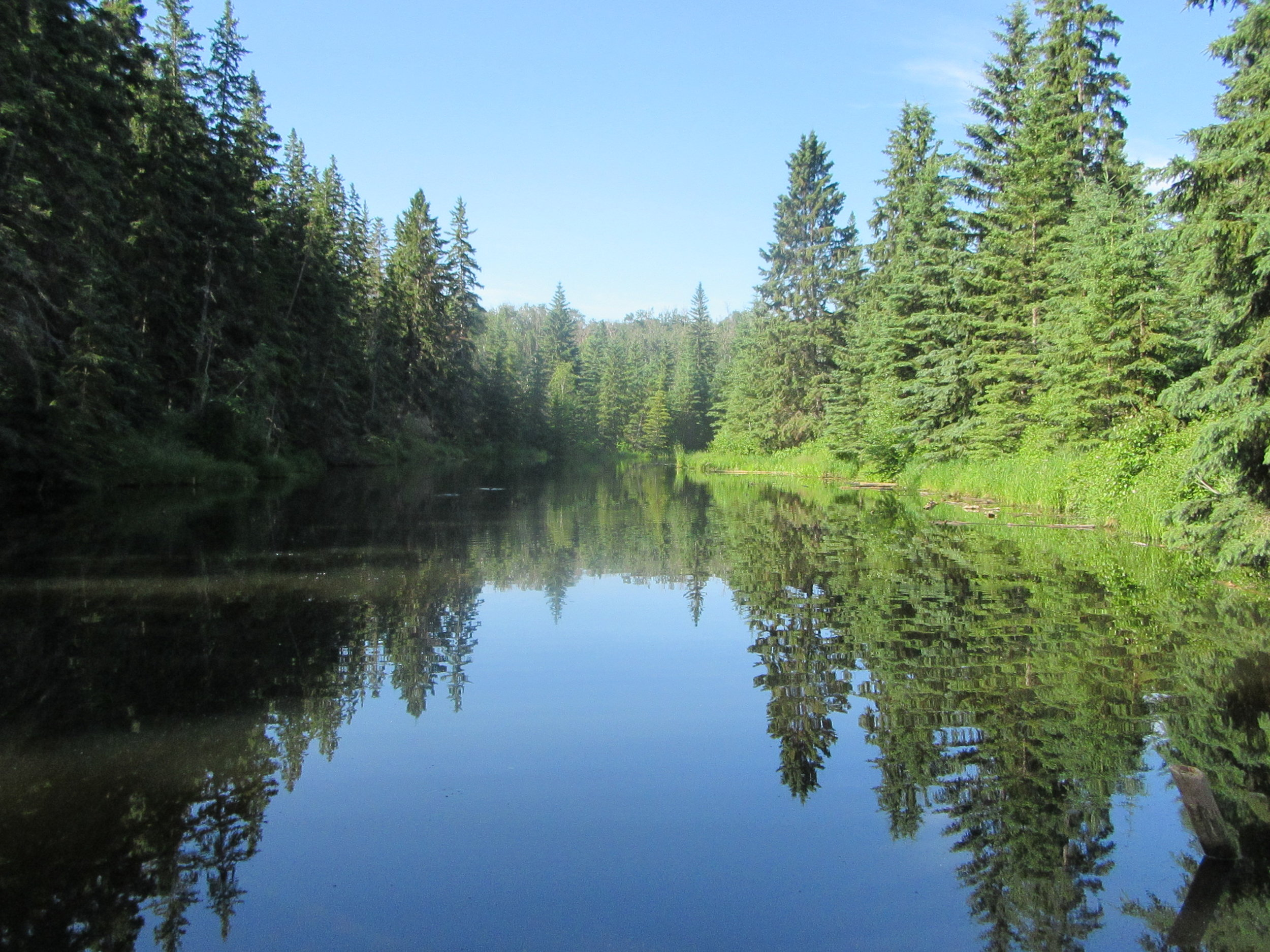 Oxbow Lake in Larch Sanctuary
