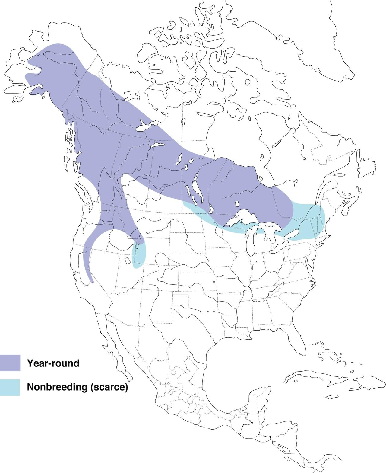 Great Gray Owl range by Cornell Lab of Ornithology.
