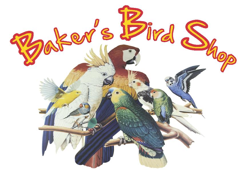 Baker's Bird Shop