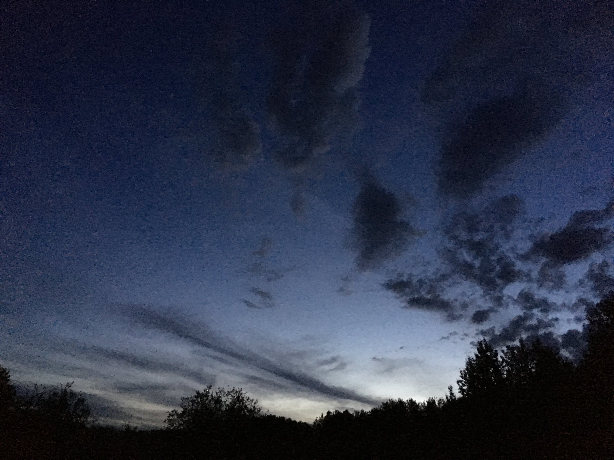 The night sky at the Glory Hills Bat and Owl survey
