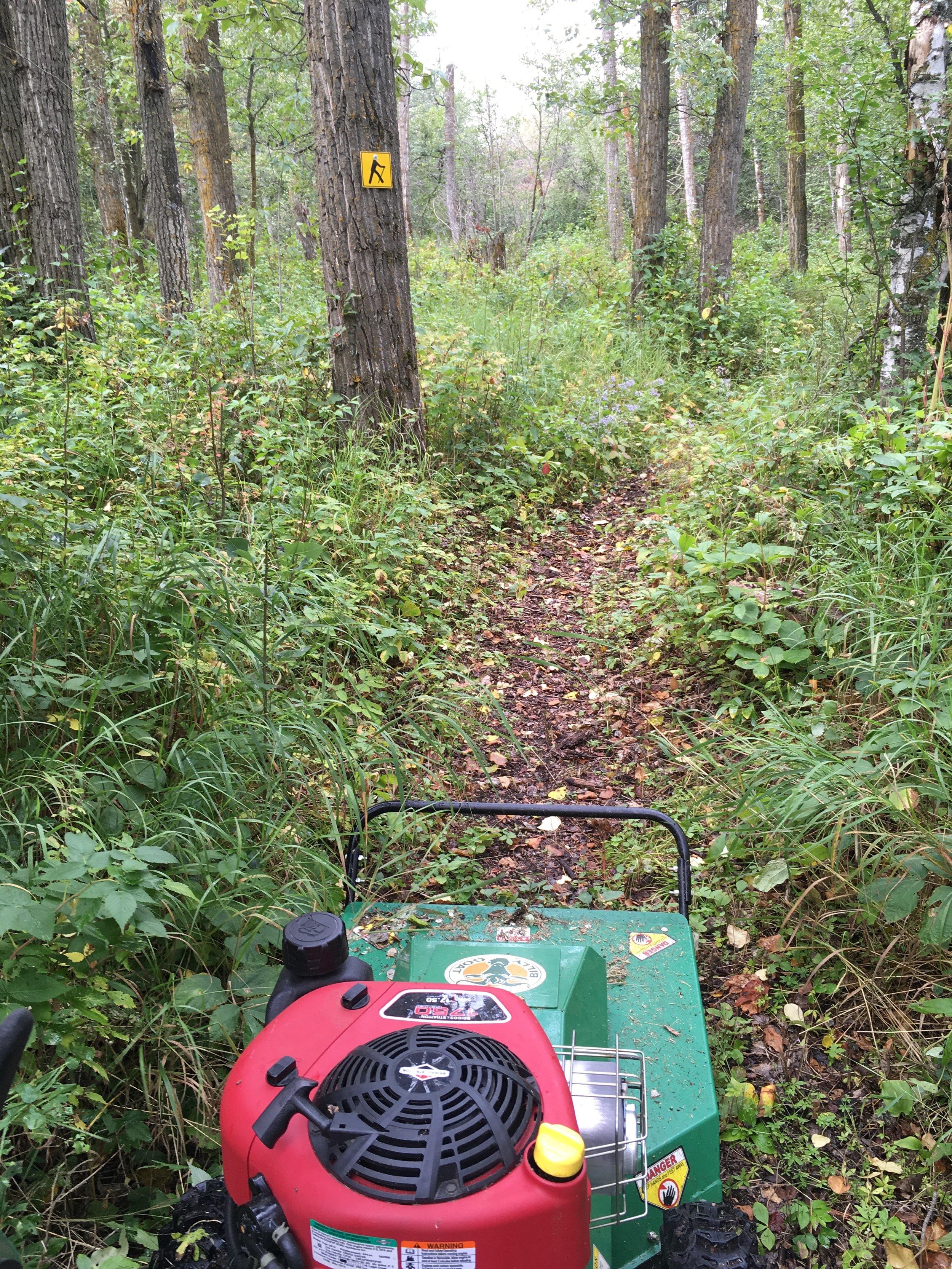 Volunteers helped maintain the trails at Boisvert's Greenwoods
