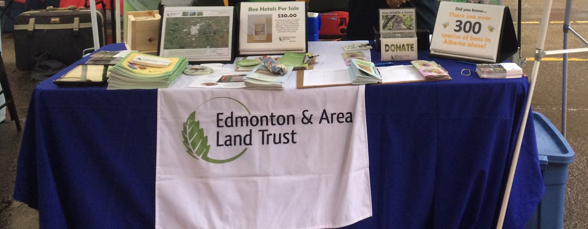 Edmonton and Area Land Trust sells bee hotels for $30 and also hosts workshops for people who want to build their own.